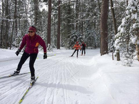 Skiing In Michigan Map.Noquemanon Forestville Noquemanon Trail Network